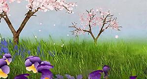 Yoplait Spring